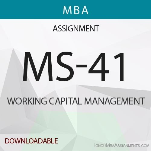 MS-41 Solved Assignment